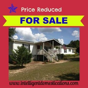 House For Sale Graphic Intelligentdomestications.com