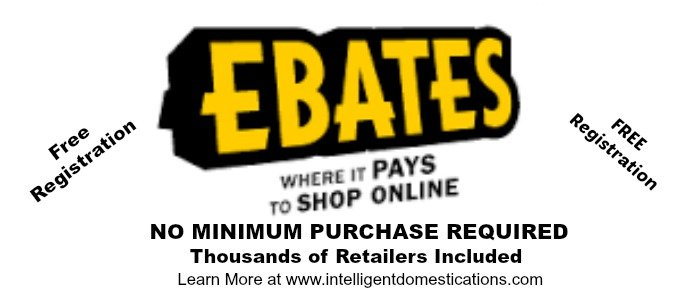 Ebates Gives You Money