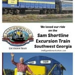 Sam Shortline Excursion Train.intelligentdomestications.com