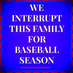 Baseball season by Intelligentdomestications.com