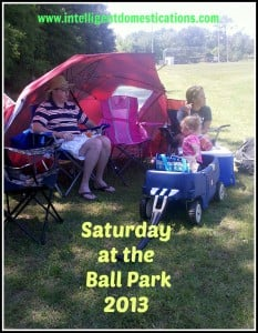 Sat. at Ballpark umbrella, wagon, cooler and hot dogs. Intelligentdomestications.com