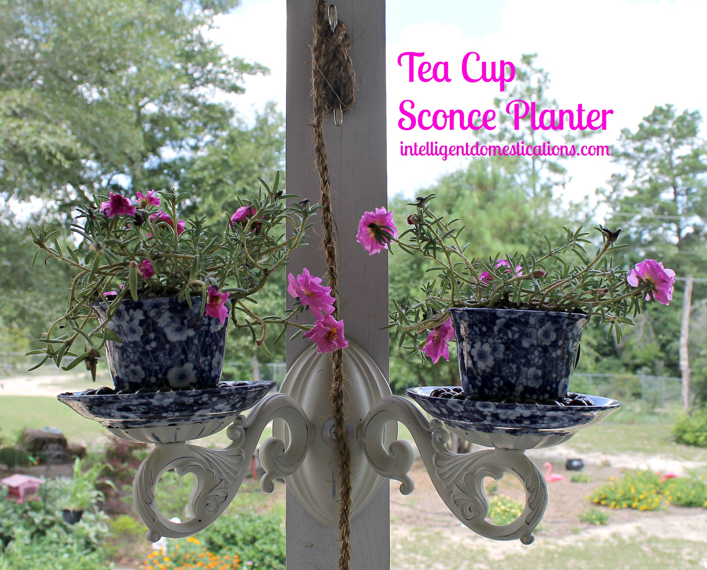 Porch makeover project diy tea cup sconce planter intelligent diy tea cup sconce planter arubaitofo Choice Image