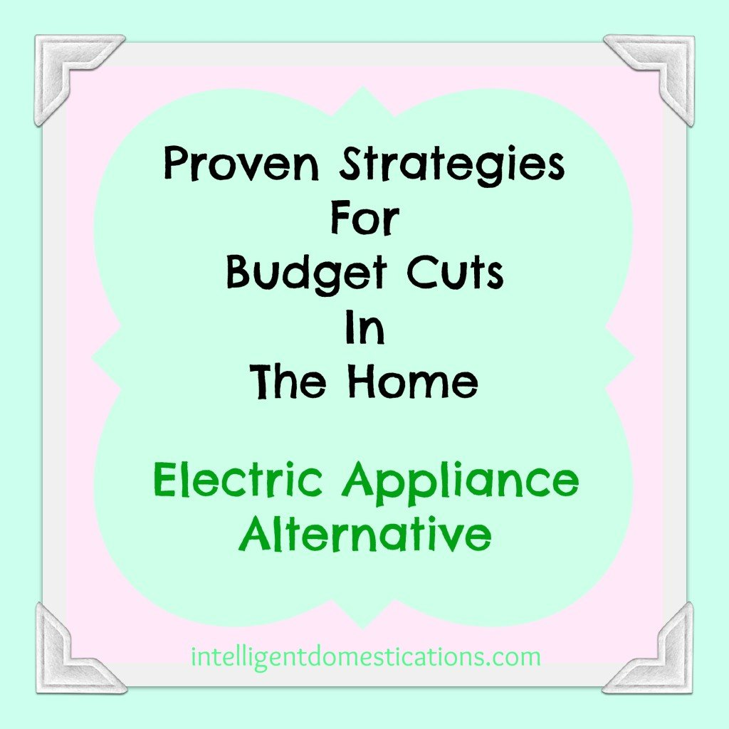 Proven Strategies For Budget Cuts In The Home. Electric Appliance Alternative.intelligentdomestications.com