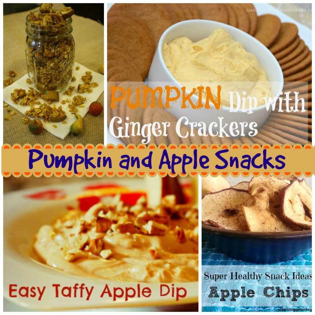 Pumpkin and Apple Snacks by Southern Girls Blogger Group.www.intelligentdomestications.com
