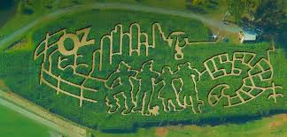 An aerial view of The Rock Ranch Corn Maze 2014 Wizard of Oz