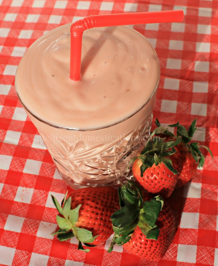 Enjoy a guilt free Faux Strawberry Shake with Activz Strawberry Powder.intelligentdomestications.com
