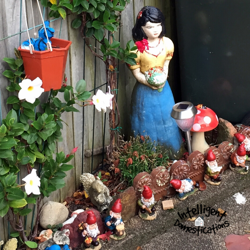 Gnomes, Toadstools and whimsical Fairies create fun little Fairy Gardens