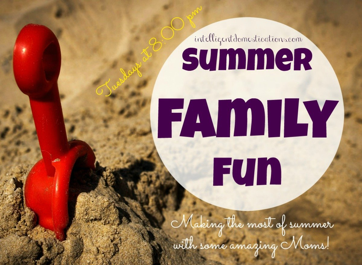 Summer Family Fun Linky Party & Fairy Gardens