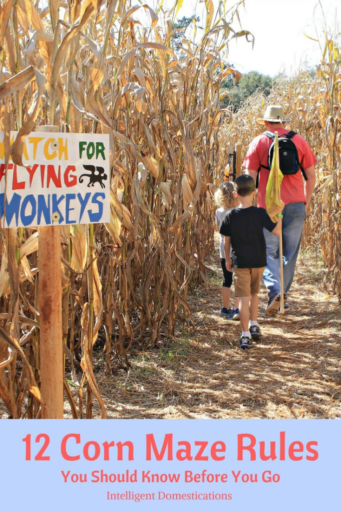12 Corn Maze Rules you should know before you go. Corn Maze Rules. Big list of Georgia Corn Maze locations