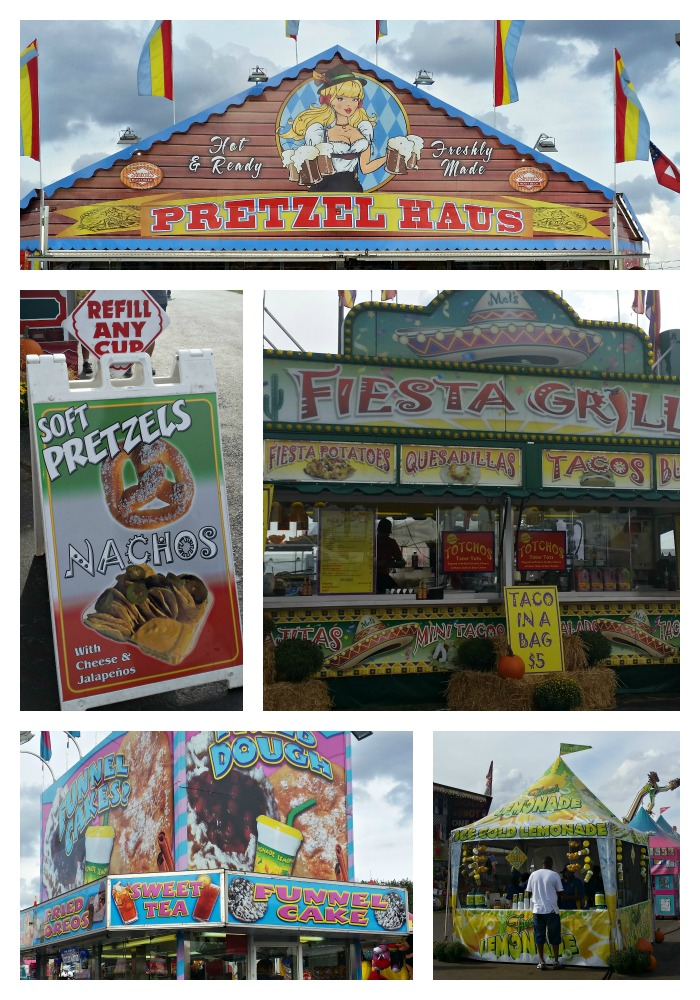 Ga. National Fair Food 3 2015