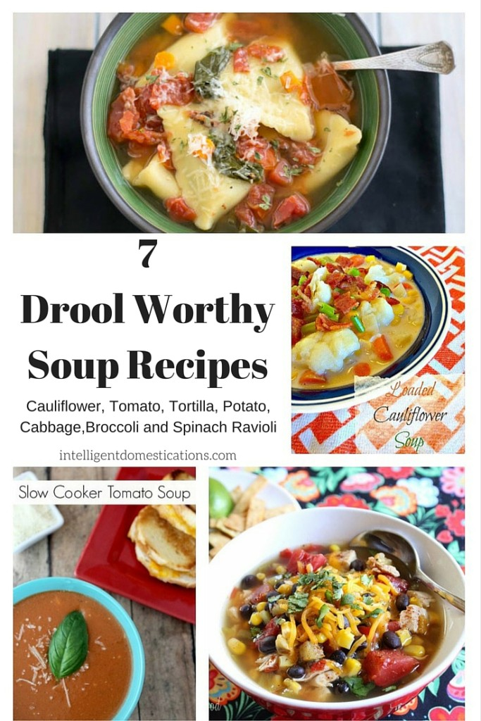 7Drool WorthySoup Recipes