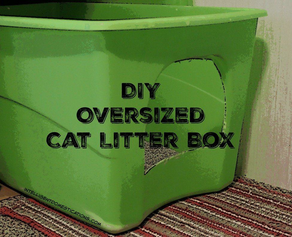 DIY Oversized Cat Litter Box.intelligentdomestications.com