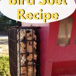 Easy 5 ingredient Bird Suet Recipe using peanut butter. Make this bird suet with the children, it's that easy. Freezes well. #birdsuet #birding #outdoorliving