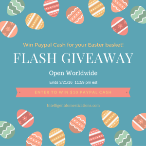 FLASH GIVEAWAY