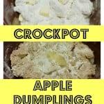 3 Ingredient Crockpot Apple Dumplings.Find the easy recipe at intelligentdomestications.com
