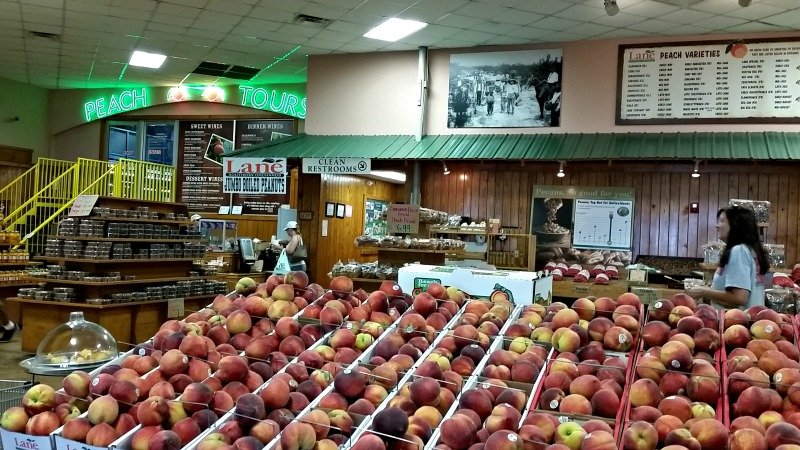 Fresh Peaches area plenteous at Lane Southern Orchards during peach season. You will find fresh Pecans just as plenteous during pecan season