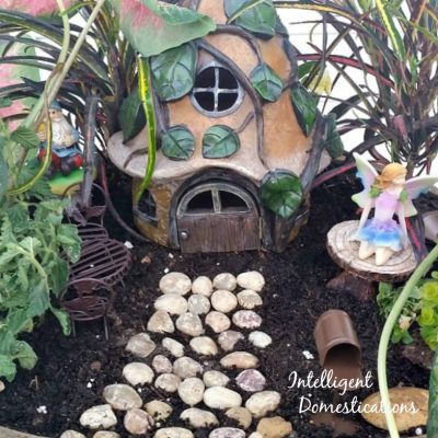 Our 2016 Fairy Garden Tour