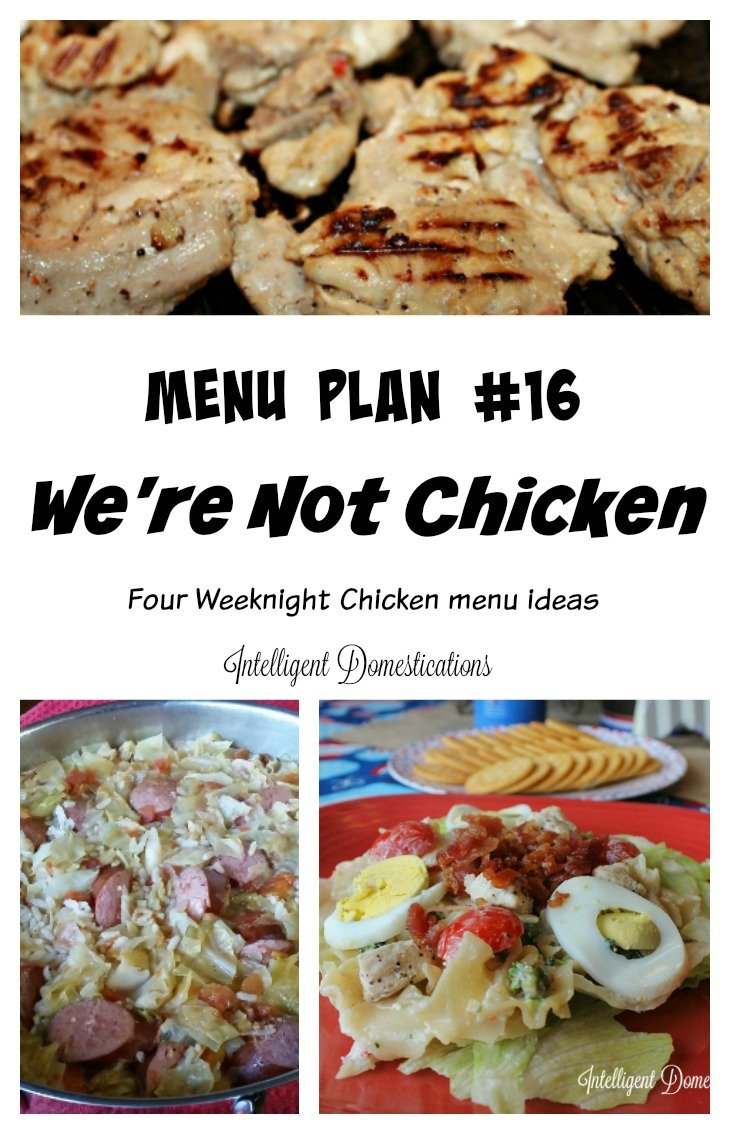 Menu Plan #16 We're Not Chicken! Four of our Seven Menu suggestions include chicken as an ingredient