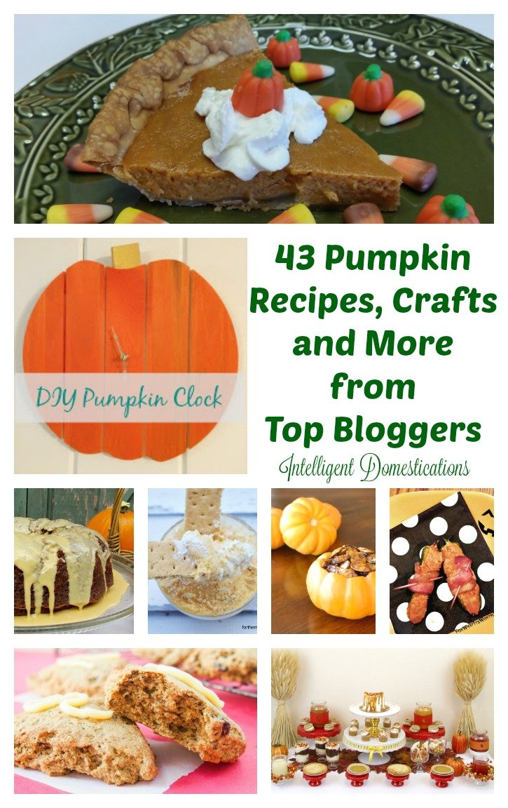 43-pumpkin-recipes-crafts-and-more-from-top-bloggers-at-intelligentdomestications-com-sofabseasons