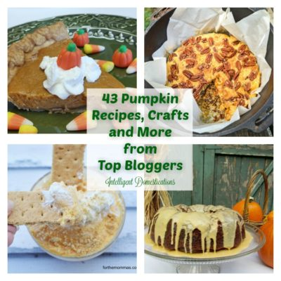 43 Pumpkin Recipes, Crafts and More From Top Bloggers