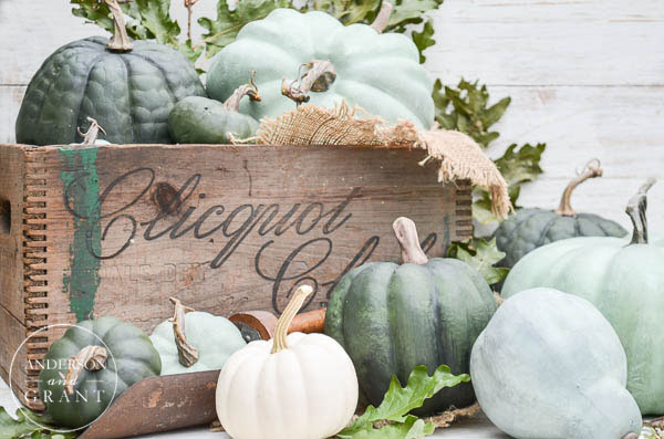 crate-fall-pumpkins-anderson-and-grant