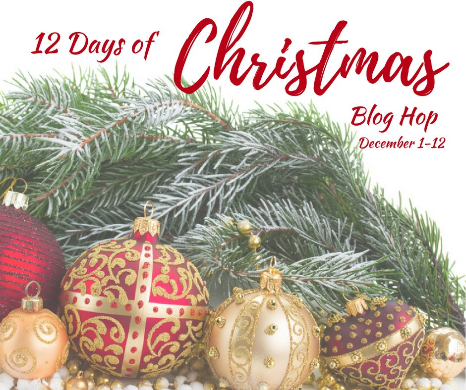 12 Days of Christmas Blog Hop 2018. Intelligentdomestications.com
