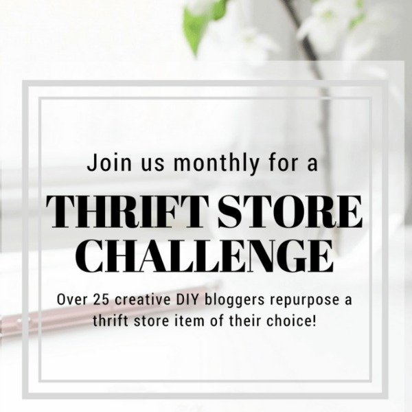 Thrift Upcycle Monthly Challenge