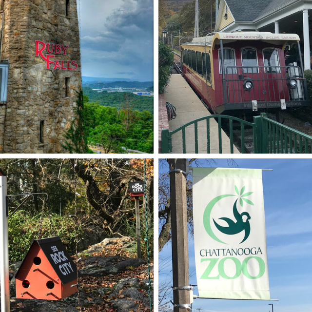 4 Things to See and Do in Chattanooga, Tn. for couples or Families. A weekend trip to Chattanooga will be adventurous packed when visiting Ruby Falls, Rock City, the Incline and The Chattanooga Zoo. #rubyfalls #seerockcity #chattanooga