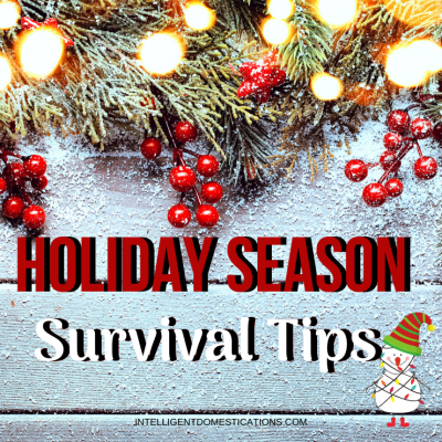 My Holiday Season Survival Tips
