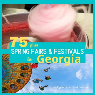 Georgia Spring and Summer Fairs & Festivals