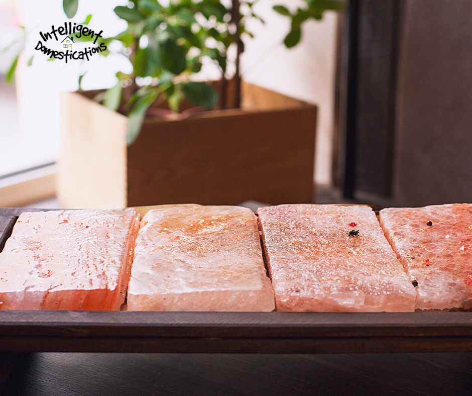 Himalayan Salt Blocks side by side on a tray near a window with a houseplant in the background