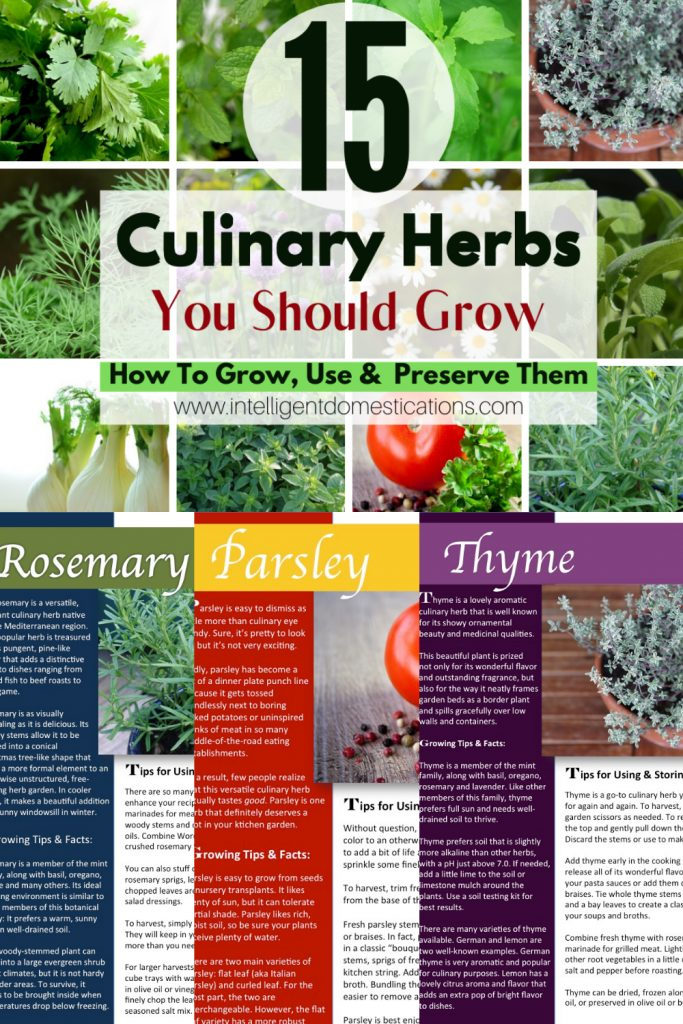 Pictures of herbs